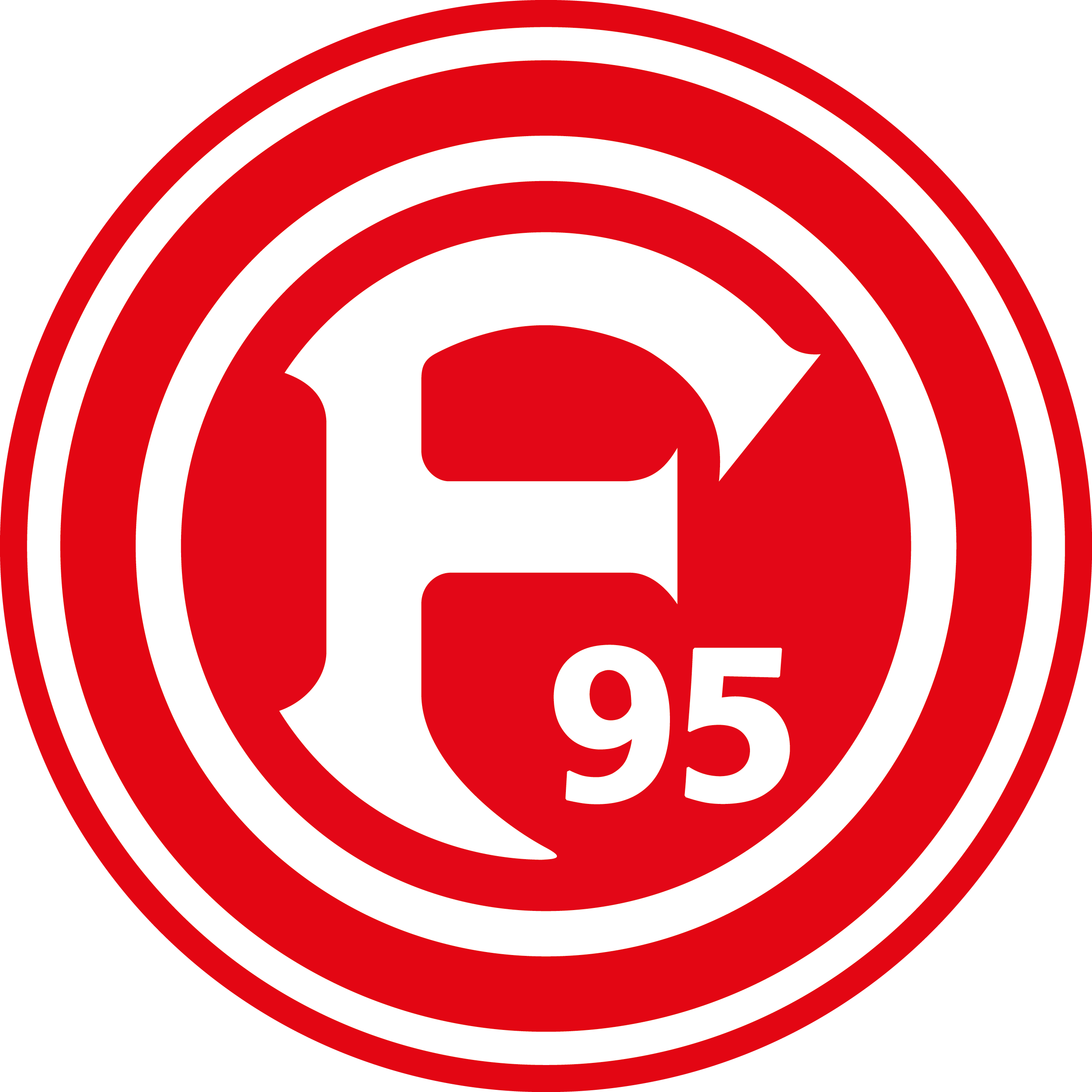 Fortuna Düsseldorf 1895:Überblick